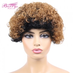 Berrys Fashion Hair Omber Kinky Curly Lace Pixie Cut Wigs 100% Human Hair  Frontal Lace Wig